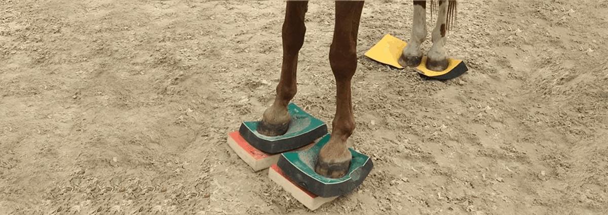 Sure Foot Pads